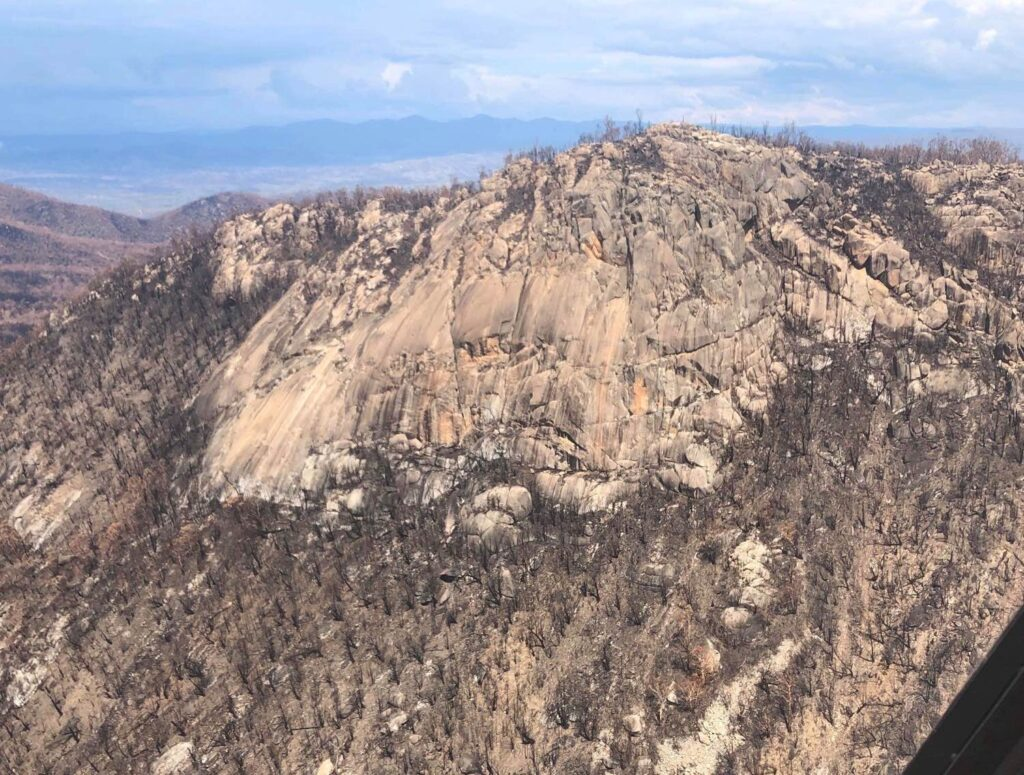 Booroomba Rocks post 2020 fires